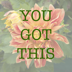 "A flower with an overlay of words that says ""You got this"""