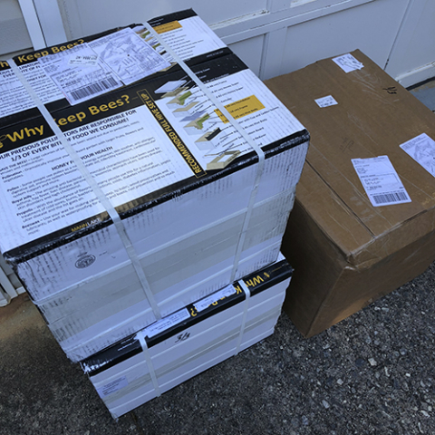 Picture of beehive boxes in driveway