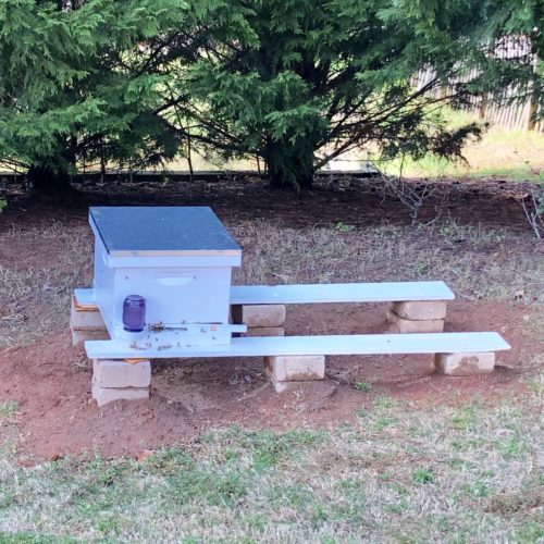 Photo of one honeybee super box, on boards resting on stones off the ground